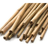 Natural Bamboo Cane 3' (25 / Pk)