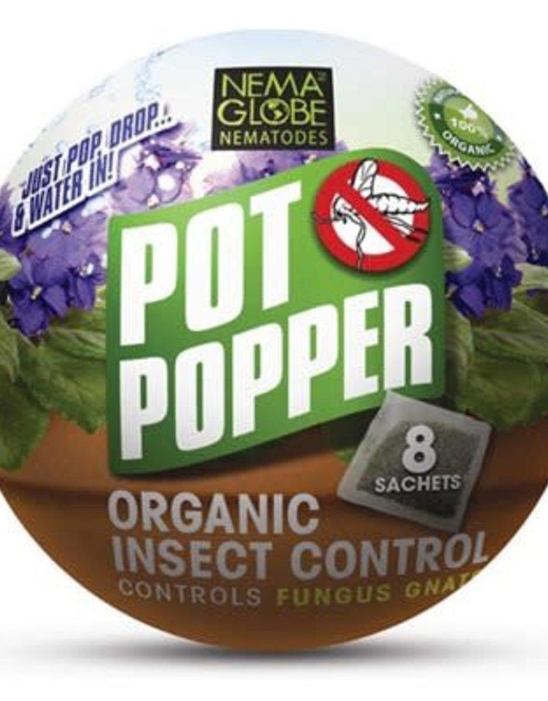 Pot Popper Pro 50 pk - Singles - 4 per pouch
