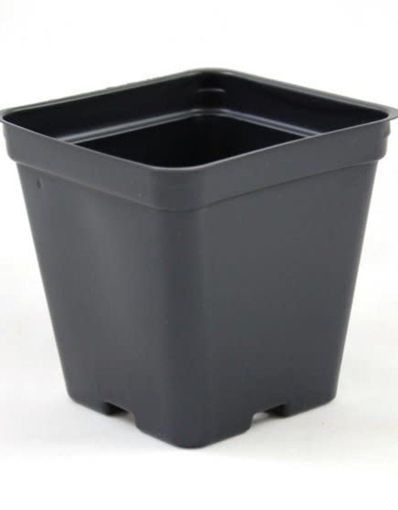 Square Pot 3.5'' - Single