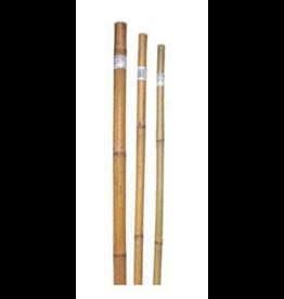 "Bamboo Poles 1""X6'"