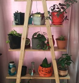 Hand Crafted Plant Stand 5 Tier