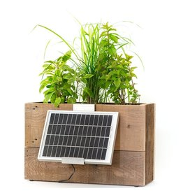 Modern Sprout Weathered Tray Solar Windowsill Planter