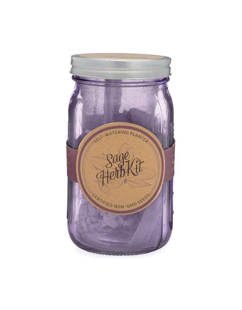 Modern Sprout Garden Jar Herb Kit - Sage