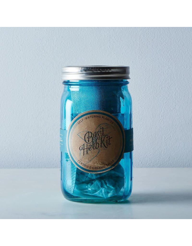 Modern Sprout Garden Jar Herb Kit - Basil