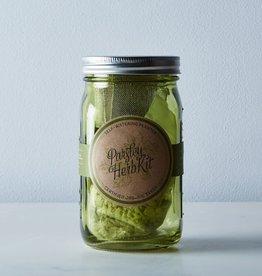 Modern Sprout Garden Jar Herb Kit - Parsley