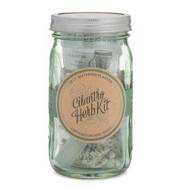 Modern Sprout Garden Jar Herb Kit - Cilantro