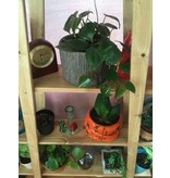 """Hand Crafted Wood Plant Stand 10"""" / 4 Tier"""