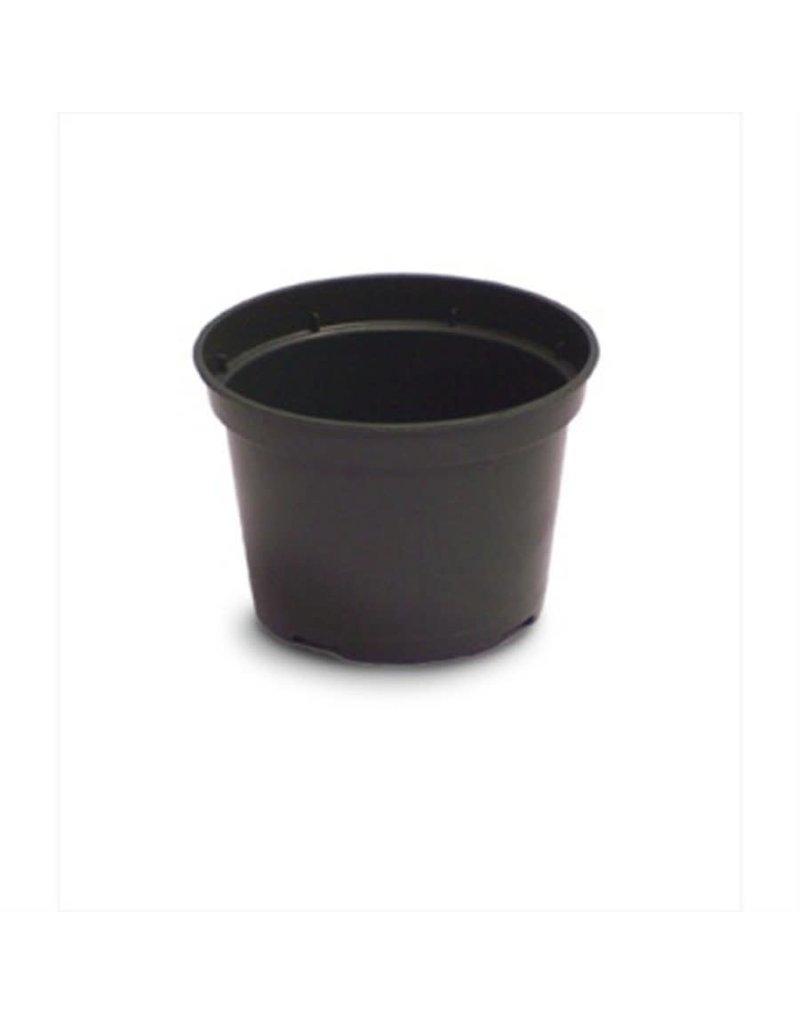 """4"""" Azalea Elite Plastic Pot Green"""