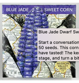 Hudson Valley Seed Company Blue Jade Dwarf Sweet Corn
