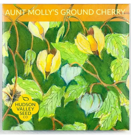 Hudson Valley Seed Company Aunt Molly's Ground Cherry