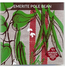 Hudson Valley Seed Company Emerite Pole Bean