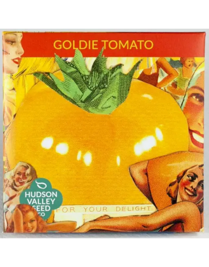 Hudson Valley Seed Company Goldie Tomato