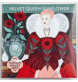 Hudson Valley Seed Company Velvet Queen Sunflower