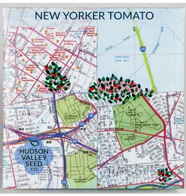 Hudson Valley Seed Company New Yorker Tomato