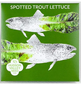 Hudson Valley Seed Company Spotted Trout Lettuce Seeds