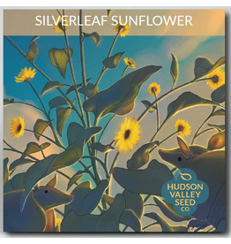 Hudson Valley Seed Company Silverleaf Sunflower