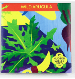 Hudson Valley Seed Company Wild Arugula Greens Seeds
