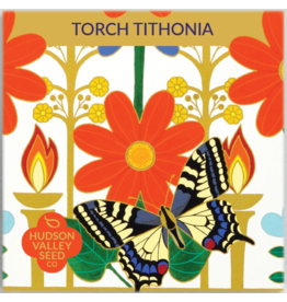 Hudson Valley Seed Company Torch Tithonia Seeds
