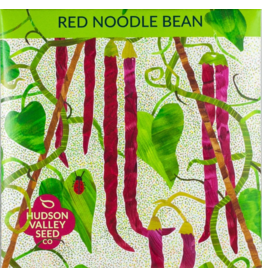 Hudson Valley Seed Company Red Noodle Pole Bean Seeds