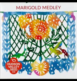 Hudson Valley Seed Company Marigold Medley Seeds