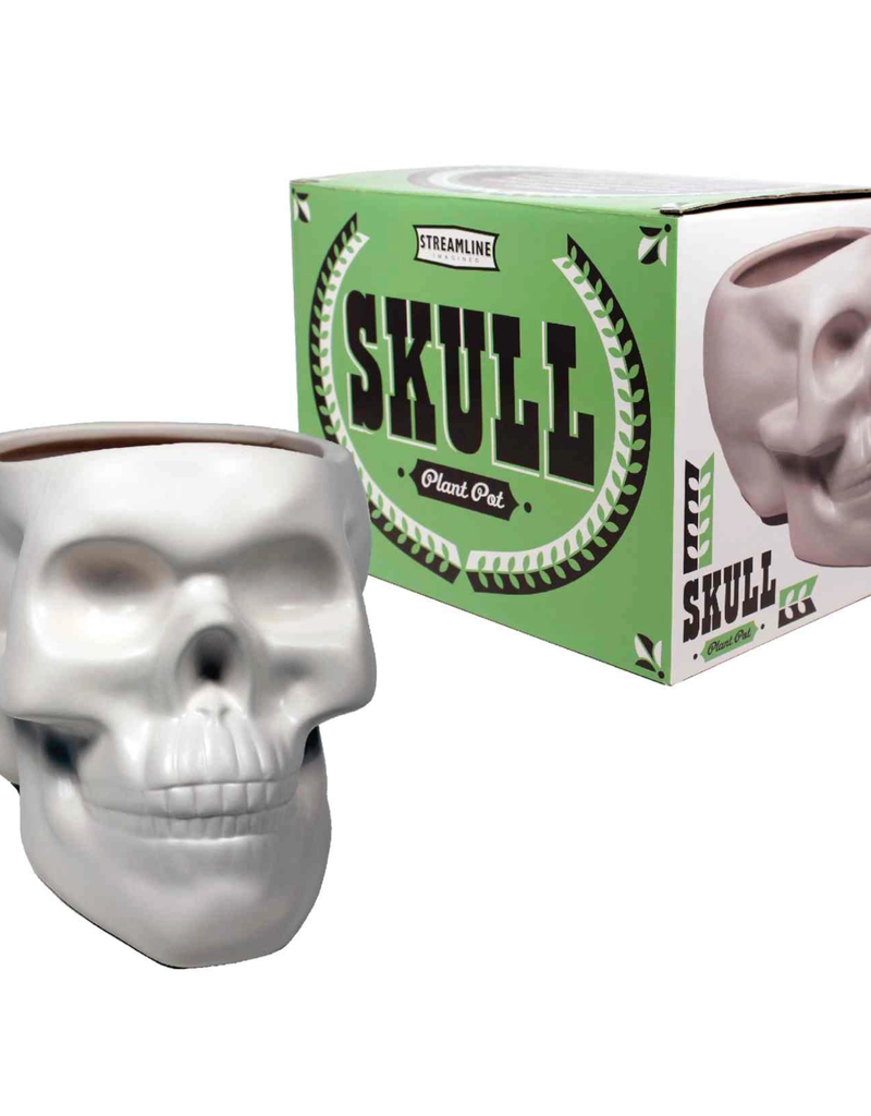 Ceramic Bone Skull Planter