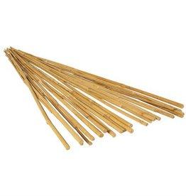 GardenStar GardenStar 5' Natural Bamboo Cane (10pk)