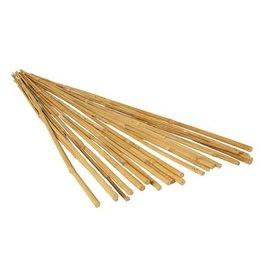 GardenStar 5' Natural Bamboo Cane (10pk)