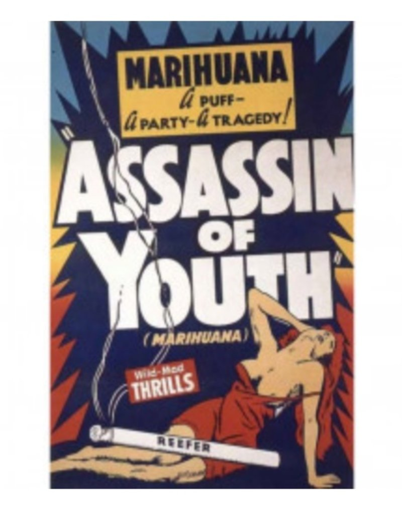 "Assassin Of Youth Poster - 24"" x 36"""