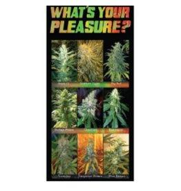 "What's Your Pleasure Beach Towel - 28"" x 58"""