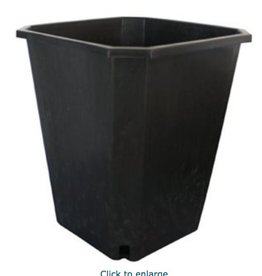 "FHD FHD 11L Square Black Pot 10"" x 10"" x 11.5"""