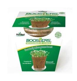 Microgreen Booster Broccoli