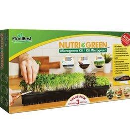 PlantBest Nutri- Green Microgreen Kit Broc, Lettuce, Radish
