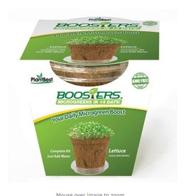 PlantBest Microgreen Booster Lettuce