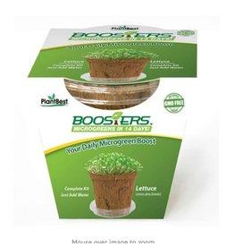 PlantBest Microgreen Booster Lettuce