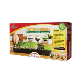 PlantBest Nutri-Green Microgreen Kit Cabbage, Spinach, Mustard