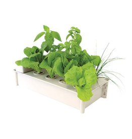 Hydrofarm HYD Salad Box Hydroponic Salad Garden Kit