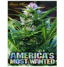 Aquarius America's Most Wanted 1000 Piece Jigsaw Puzzle