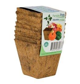"HC 3"" Sq Fiber Grow Coco Coir Pots"