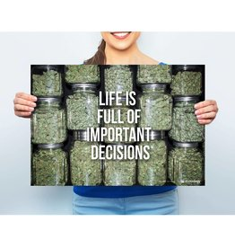 "Stonerdays Marijuana Poster Life Is Full Of Important Decisions 13"" x 19"""