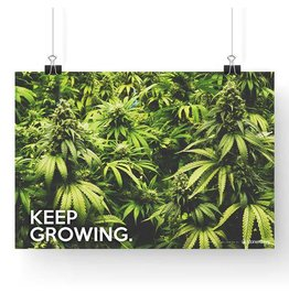 "Stonerdays Marijuana Poster Keep On Growing Cannabis 13"" X  19"""