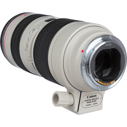 Canon  EF 70-200mm F2.8 Objectif