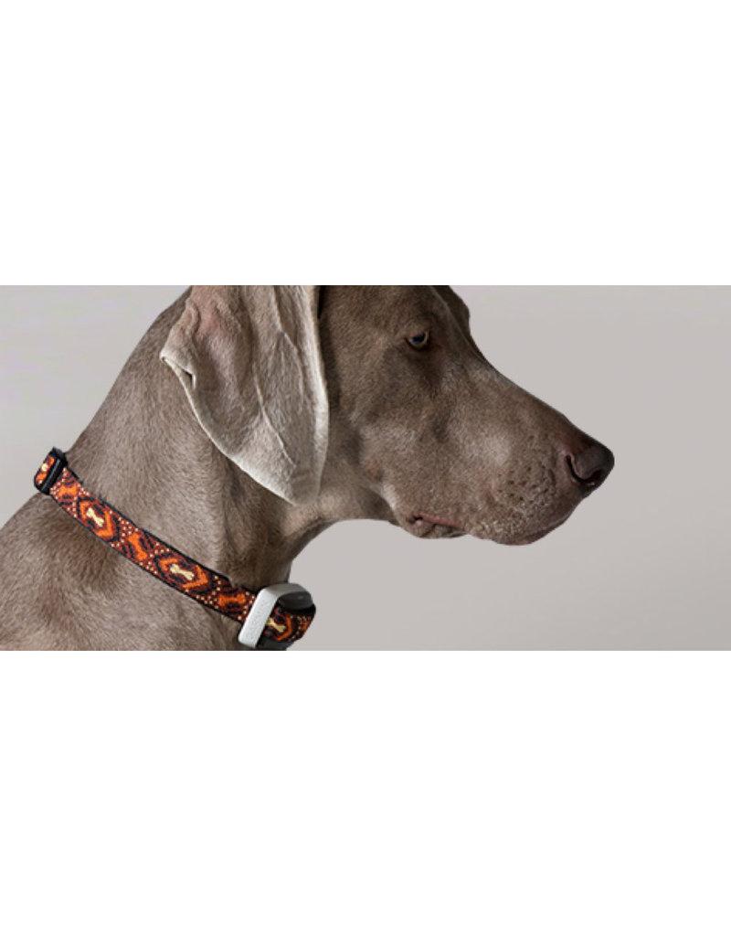Garmin GarminSystème de dressage pour chien Delta Smart