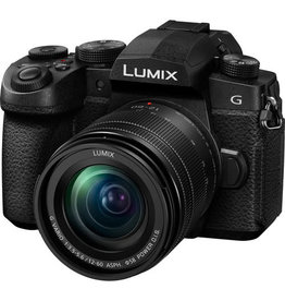 Panasonic Panasonic Lumix DC-G95 mirrorless camera with 12-60mm lens