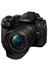 Panasonic Panasonic Lumix DC-G95 mirrorless camera with 12-60mm lens