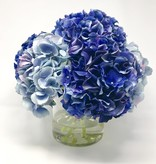 "Large Hydrangea x7 in 6"" Cylinder-Faux Water (Dark Blue, Light Blue)"