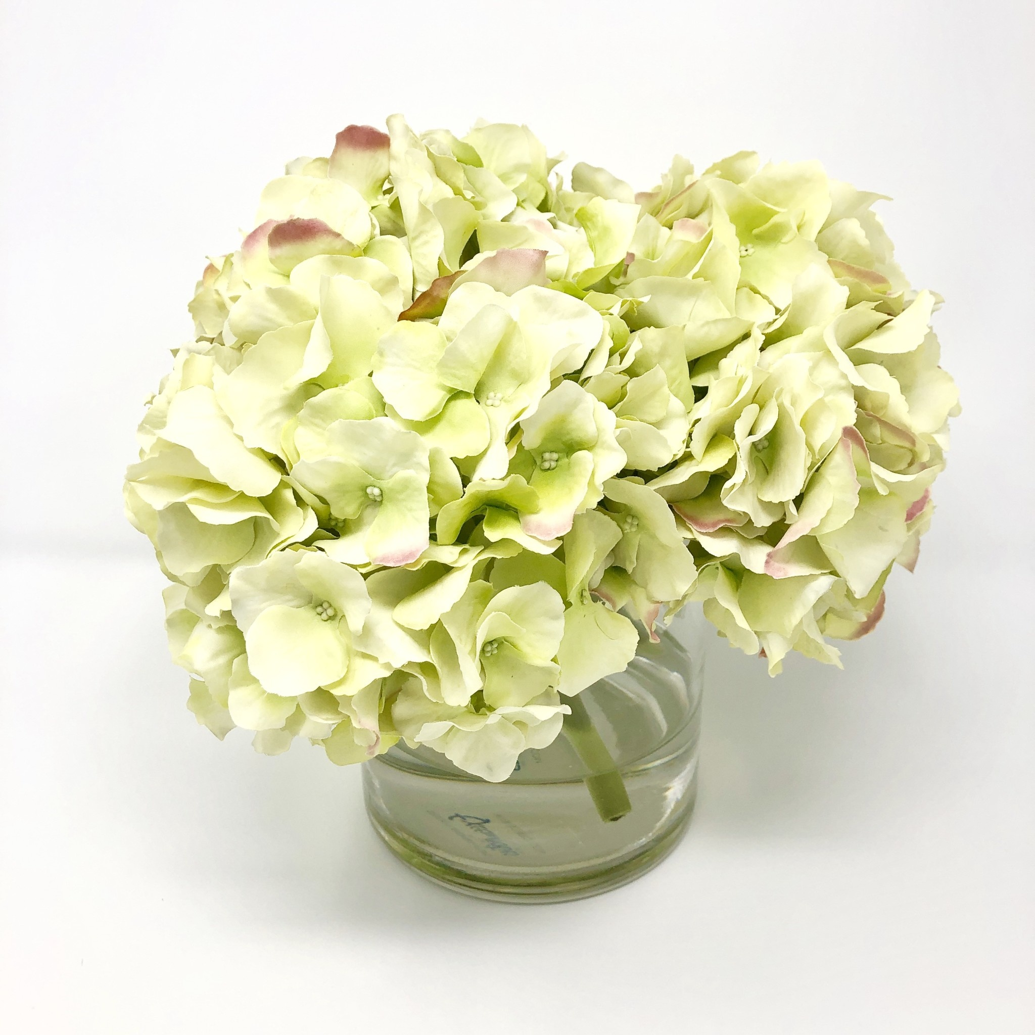 """Large Hydrangea x3 in 5"""" Cylinder-Faux Water (Light Green)"""