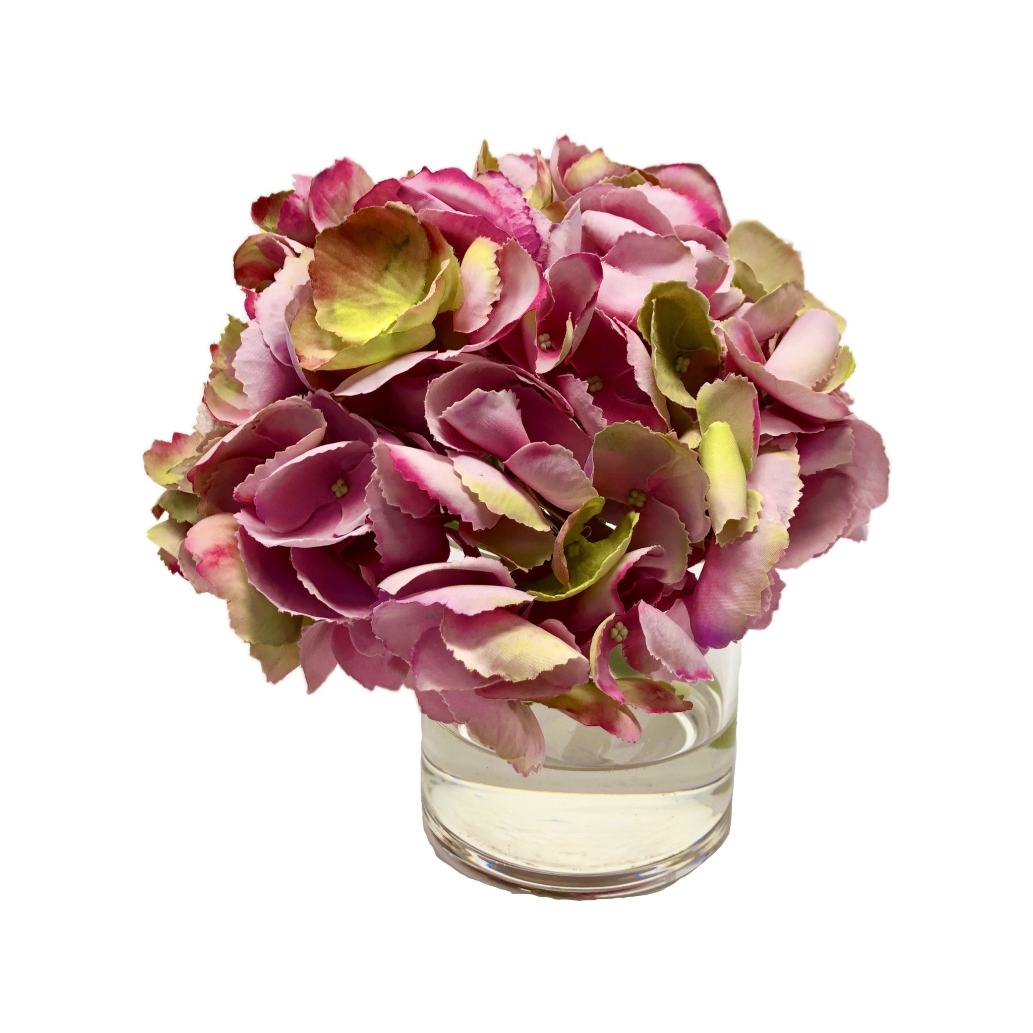 """Hydrangea in 4"""" Cylinder-Faux Water (Green Pink)"""