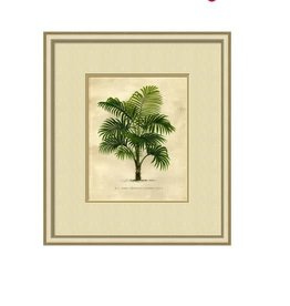 Small Island Palm IV