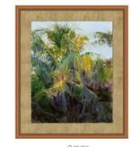 Palm Shade 1