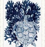 Navy Turtle